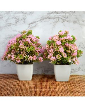 Artificial Bonsai Tree / Plants with Pot for Home Indoor Pack of Combo 2 pc
