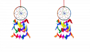 6 Inch Dream Catcher Wall Hanging for Positive Energy ( Combo 2 )