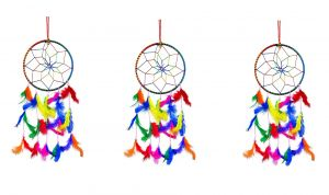 6 Inch Dream Catcher Wall Hanging for Positive Energy ( Combo 3 )