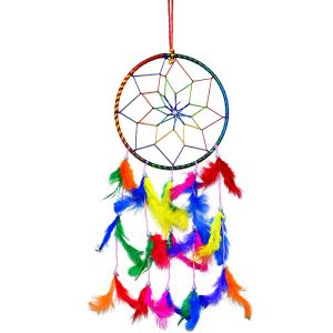 6 Inch Dream Catcher Wall Hanging for Positive Energy