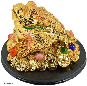 Golden Frog with Coins for Wealth