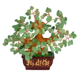 Green Jade Tree Place for Good Luck and Prosperity