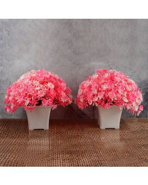 Artificial Bonsai Tree / Plants with Pot for Home Decor Pack of Combo 2 pc