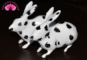 Brass Rabbit Pair Black & White for Feng Shui 650 Grams Approx