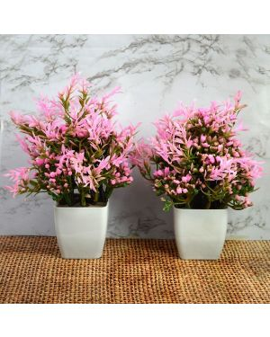 Artificial Bonsai Plants / Tree with Pot for Home Indoor Pack of Combo 2 pc