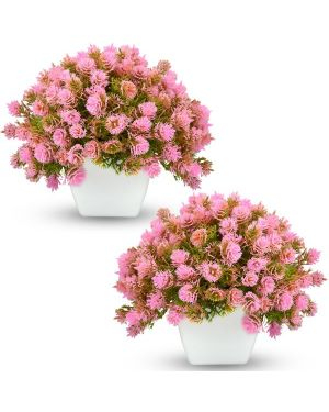 Artificial Bonsai Tree / Plants with Pot (Pack of Combo 2 pc)